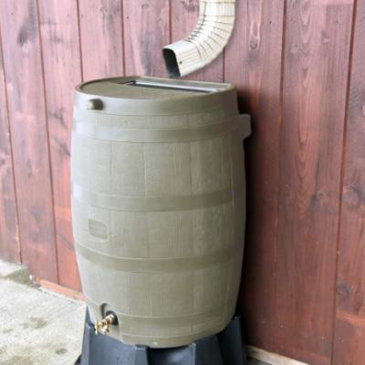 rain-gallon